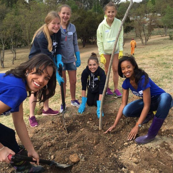 Planting Trees in the Park